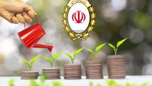 فرم حمایت مالی وردپرس با درگاه بانک ملی